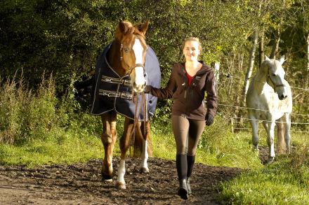 equest übergangsdecke pferde