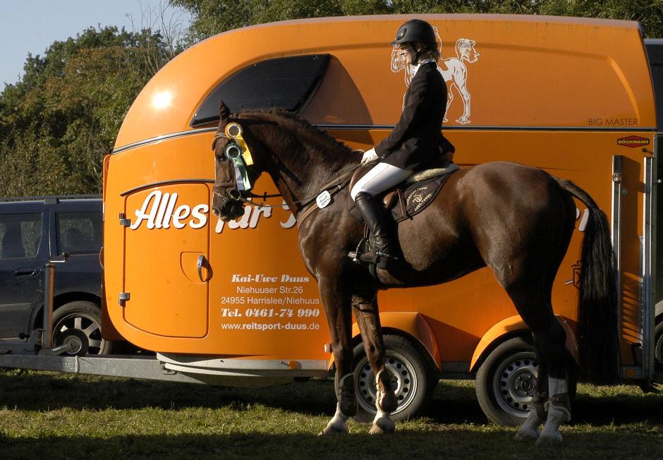 Pferdetransporter von Reitsport Duus